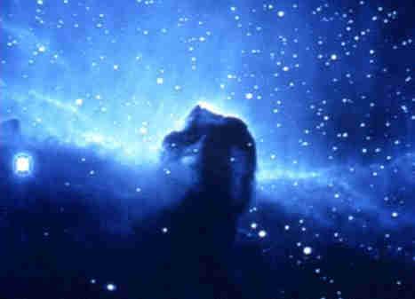Le Particelle - Per Amore / Oggi, Domani
